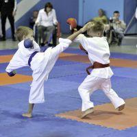 karate-223
