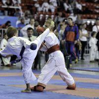 karate-264