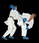sheba-karate